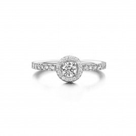 Clover - Engagement ring in white gold and diamond